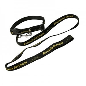 BVB Pet Collar and Lead – Small All items