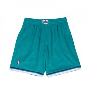 """Charlotte Hornets Hardwood Classics Swingman Short – Mens"" All items"