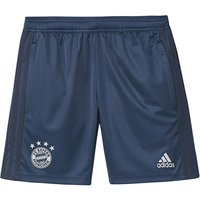 FC Bayern Training Short - Navy - Kids
